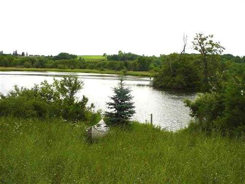 Erickson Wetlands